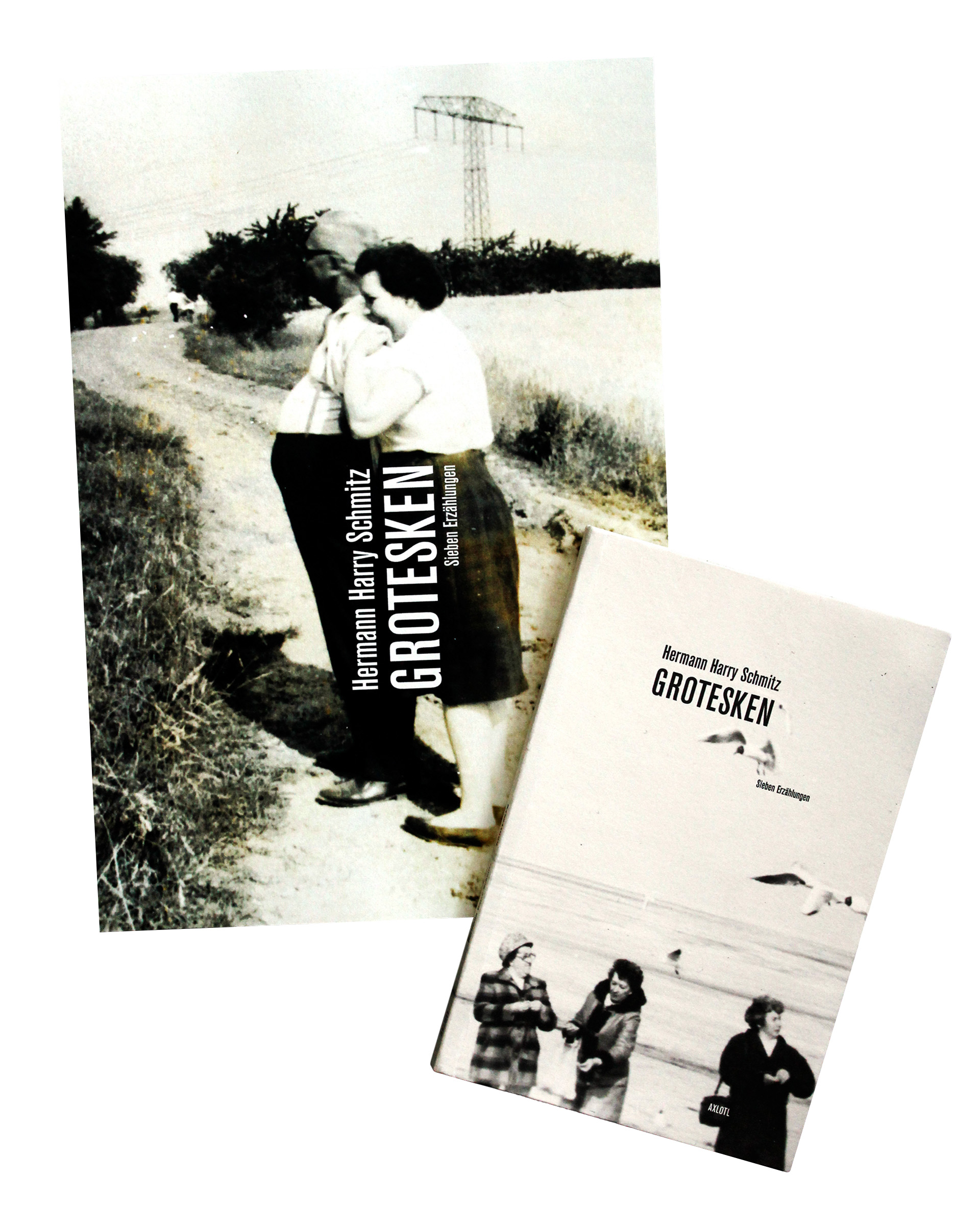 Book cover and promotional poster